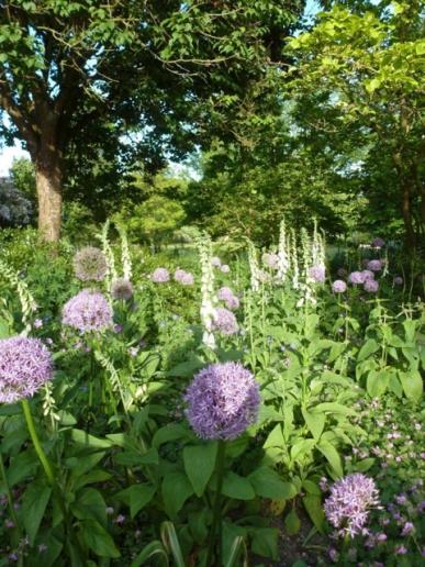Botanic Tour2