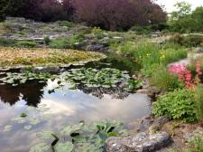 Botanic Tour6